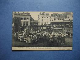 TOURNAI  -  Cortège Tournoi De Chevalerie  -  1513 - 1913  -  13-14-20-21 Juillet  - ( Regroupement  ) -  BELGIQUE - Tournai