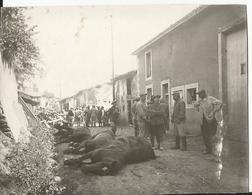 Photo - Grande Guerre - Lemmes Meuse - 55 - Militaires Chevaux Morts - Scène De Guerre - Guerra, Militari