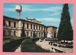 Moglia - Scuole Elementari - Mantova