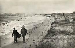 - Calvados -ref-F974 - Franceville - Dunes Et Mer Par Gros Temps - Chasseurs - Chasseurs - Chasse - Carte Bon Etat - - Autres Communes