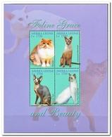 Sierra Leone 2004, Postfris MNH, Cats - Sierra Leone (1961-...)