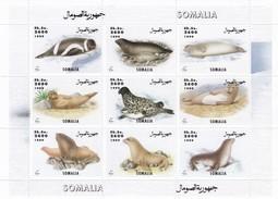 Somalia Minipliego - Somalia (1960-...)