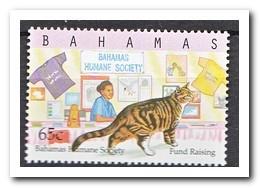 Bahama's 2000, Postfris MNH, Cats - Bahama's (1973-...)