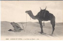 POSTAL    - SCÉNES ET TYPES   - LA PRIÈRE DU DESERT - Postales