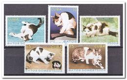 Cuba 2005, Postfris MNH, Cats - Cuba