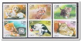 Cuba 2007, Postfris MNH, Cats - Cuba
