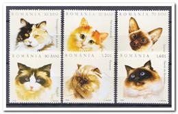 Roemenië 2006, Postfris MNH, Cats - 1948-.... Republieken
