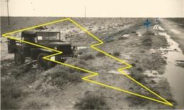 Photo   CAMION DODGE Photo   Militaire   Militaria  12 Batterie  4RACM  ?  Algerie / N° 310   ) - Véhicules