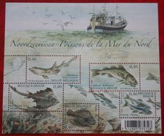 Noordzee Vissen Fish Poisson OBC N° 3533-3537 113 (Mi 3581-3585 Bl 109) 2006 POSTFRIS MNH ** BELGIE / BELGIEN / BELGIUM - Belgien