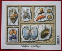 Schelpen Shell Muscheln Coquille OBC N° 3419-3424 122 (Mi 3467-3472) 2005 POSTFRIS MNH ** BELGIE / BELGIEN / BELGIUM - Belgien