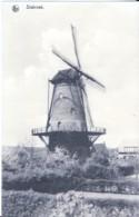 STABROEK - MOLEN - Belgique
