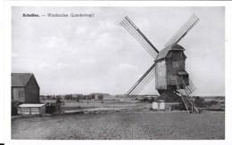 SCHAFFEN - WINDMOLEN - Belgique