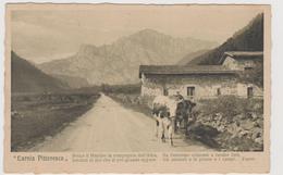 CARNIA, Friuli  - F.p. - Anni '1910 - Italia