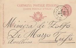 Deliceto. 1898. Annullo Grande Cerchio DELICETO, Su Cartolina Postale Con Testo - 1878-00 Umberto I
