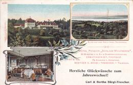 553/ Ermatingen, Thurgau, Hotel Pension Schloss Wolfsberg, Bürgi-Trescher, 1903 - TG Thurgau