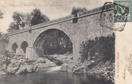 BIELLA-PONTE SUL CERVO-VALLEMOSSO-CARTOLINA VIAGGIATA IL 10-6-1902 - Biella