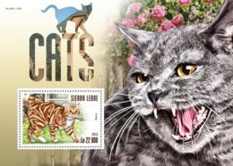 Sierra Leone 2015 Fauna  Cats - Sierra Leone (1961-...)