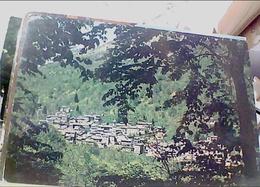 PIEDICAVALLO VEDUTA PAESE ALTA VALLE CERVO  VB1988 HB8638 - Biella