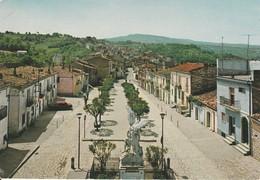 CARTOLINA: RUVO DEL MONTE (PZ) PANORAMA (MOVIMENTATA) - F/G - COLORI - VIAGGIATA  - LEGGI - Altre Città