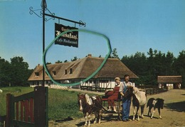 Schilde :  Gasthof BOERKE NAAS   (  Formaat 15 X 10.5  )  Zie Scans - Schilde