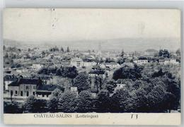 51296337 - Chateau-Salins - Chateau Salins