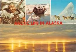Arctic Life In Alaska - Eskimo - Etats-Unis