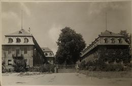 Geisenheim Am Rhein // Wilhelm Foto - AK 19?? - Andere