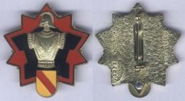 Insigne De La Direction Des Travaux Du Génie De Baden Baden - Armée De Terre
