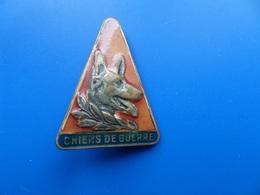 Chiens De Guerre , Insigne Algerie , Insigne , Drago Paris - Armée De Terre