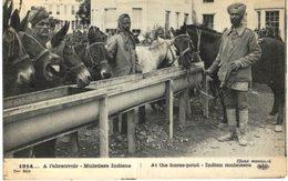A L ABREUVOIR .... MULETIERS INDIENS - Guerre 1914-18