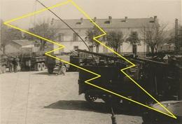 Photo   Militaire   Militaria  12 Batterie  4RACM ? Algerie / N° 310   ) - Véhicules