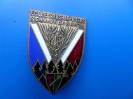 Ecole Des Cadres Du Service De Santé, WILDBAD, Faux N° , Insigne Ecole , Insigne , Drago Paris - Armée De Terre