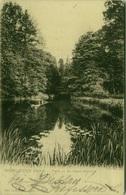 AK GERMANY - WORLITZER PARK - PARTIE AN DER AGNES - BRUCKE - EDIT LOUIS GLASER - STAMPS 1900s ( BG2949) - Woerlitz