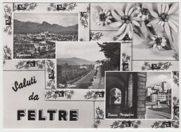 Feltre - Italia