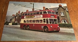 B.U.T. 9641T Trolleybus Was Built In 1948 ~ In MacDonald Road, Cowbridge - Buses & Coaches
