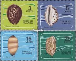 Tokelau Postfrisch Porzellanschnecken 1974 Porzellanschnecken - Tokelau