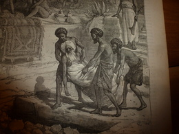 1883 JdV :Le Roi Enterré Vivant Aux îles FIDJI ;Les Missionnaires Anglais En Afrique;David Livingstone Face Au Lion ;etc - Livres, BD, Revues