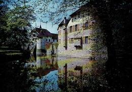 SEENGEN : Schloss HALLWIL (Halwyll) - AG Argovie