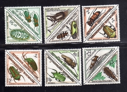 REPUBBLICA CENTRAFRICANA CENTRAFRICAINE CENTRAL AFRICAN REPUBLIC 1962 POSTAGE DUE STAMPS BEETLES TAXES TASSE MNH - Repubblica Centroafricana