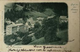 Bad Rippoldsau // Gruss Aus Dem Schwartz Wald 1901 - Bad Rippoldsau - Schapbach