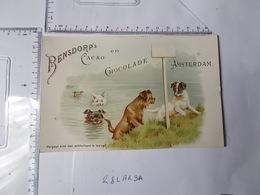 Chromo Cacao Bensdorp's -chiens Jouant Dans L'eau Photo Recto/verso - Chocolat