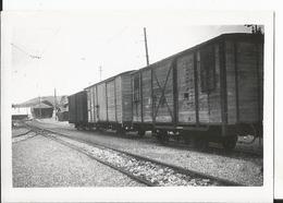 Photo - Thème Chemin De Fer  -Ligne Nyons Morez - Gare Des Rousses En 1954 - Trains
