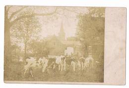 Vechmaal - Monikkenhof  Zeldzame Fotokaart - Heers