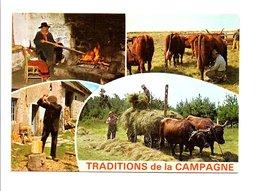 TRADITIONS DE LA CAMPAGNE - Agriculture