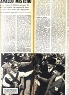 (pagine-pages)ENRICO CAMICI E RIBOT  Settimanaincom1956/29. - Livres, BD, Revues