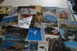 A SAISIR - Gros Lot De + 1500 CPM / CPSM Tout Venant - Cartes Postales