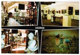 Deinze Folklore Museum (pk55644) - Deinze