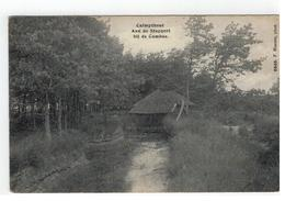 Kalmthout Calmpthout  Aan Den Stappert Bij De Cambus 1914 F.Hoelen,phot 6640 - Kalmthout