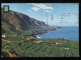 CPM Espagne LOS REALEJOS Finca De Las Cuatro Ventanas - Tenerife