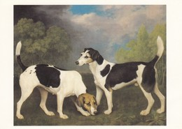 Postcard George Stubbs A Couple Of Foxhounds 1792 Tate Gallery London My Ref  B23430 - Paintings